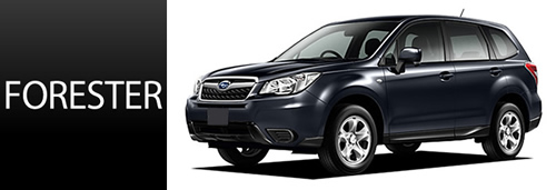 new_forester_top