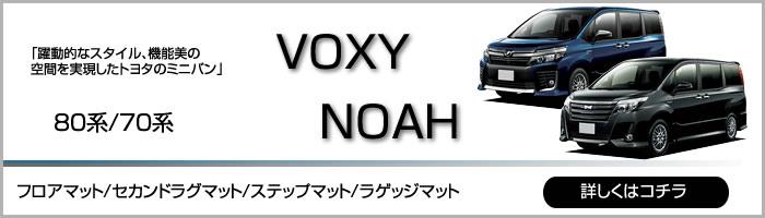 syasyub-voxynoah
