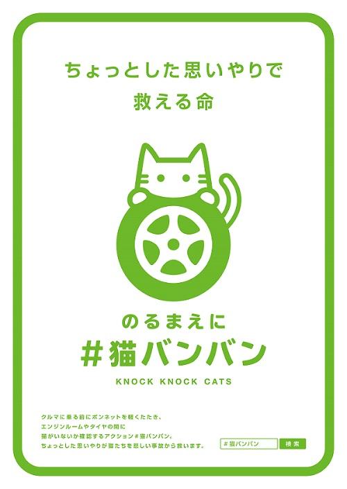 KnockKnockCats_Poster